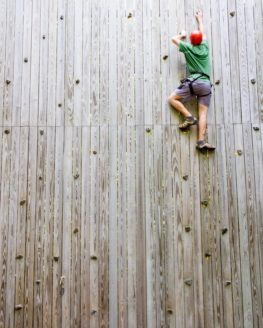 Dare to Climb